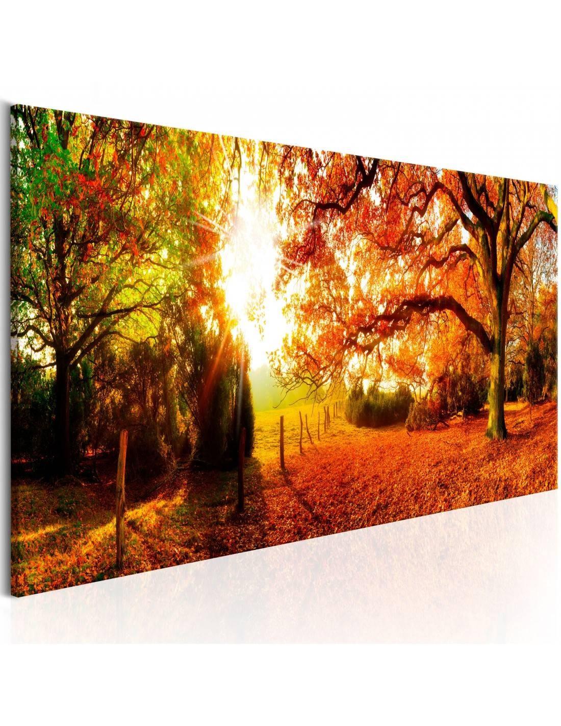 Obrazy jesieni